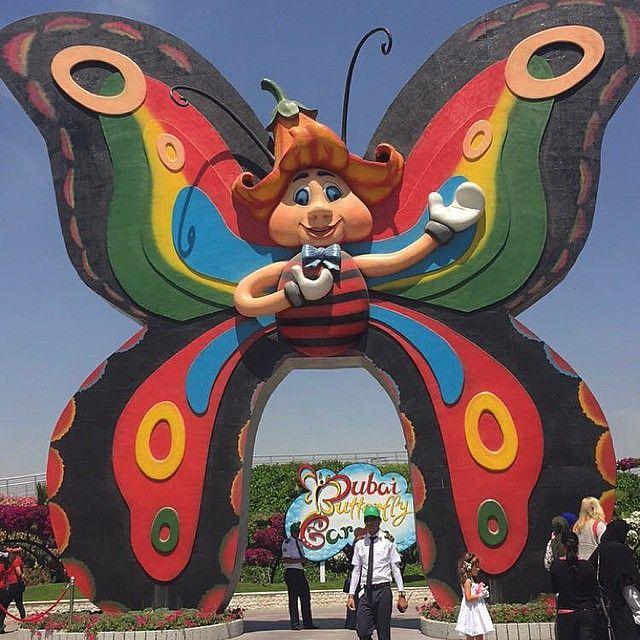Dubai Butterfly Garden حديقة دبي للفراشات افتتحت قبل أسبوع بتاريخ 25 مارس 2015 في دبي أكبر حديقة Dubai Butterfly Garden Instagram Posts
