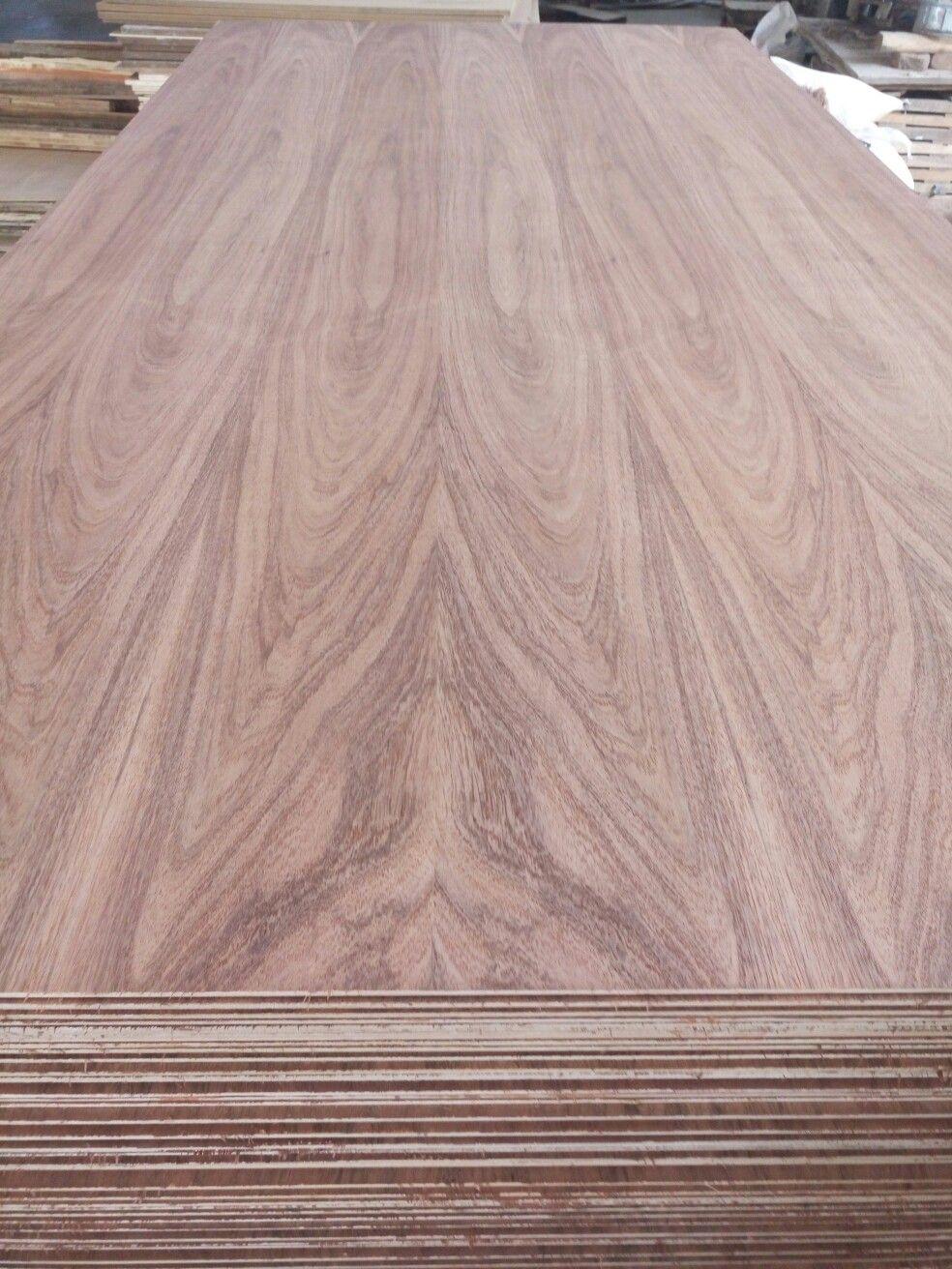 Mexico Tzalam Veneer Faced Plywood Tzalam Wood Veneer Hardwood Hardwood Floors