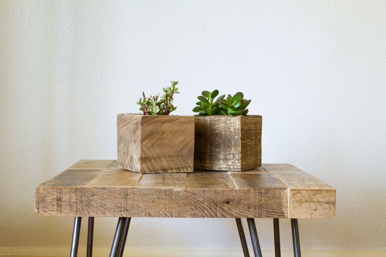 Succulent Boxes - $15