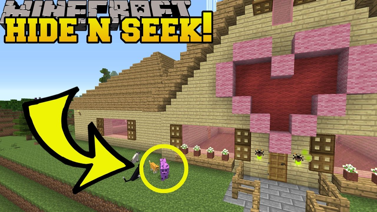 Minecraft Colorful Cats Hide And Seek Morph Hide And