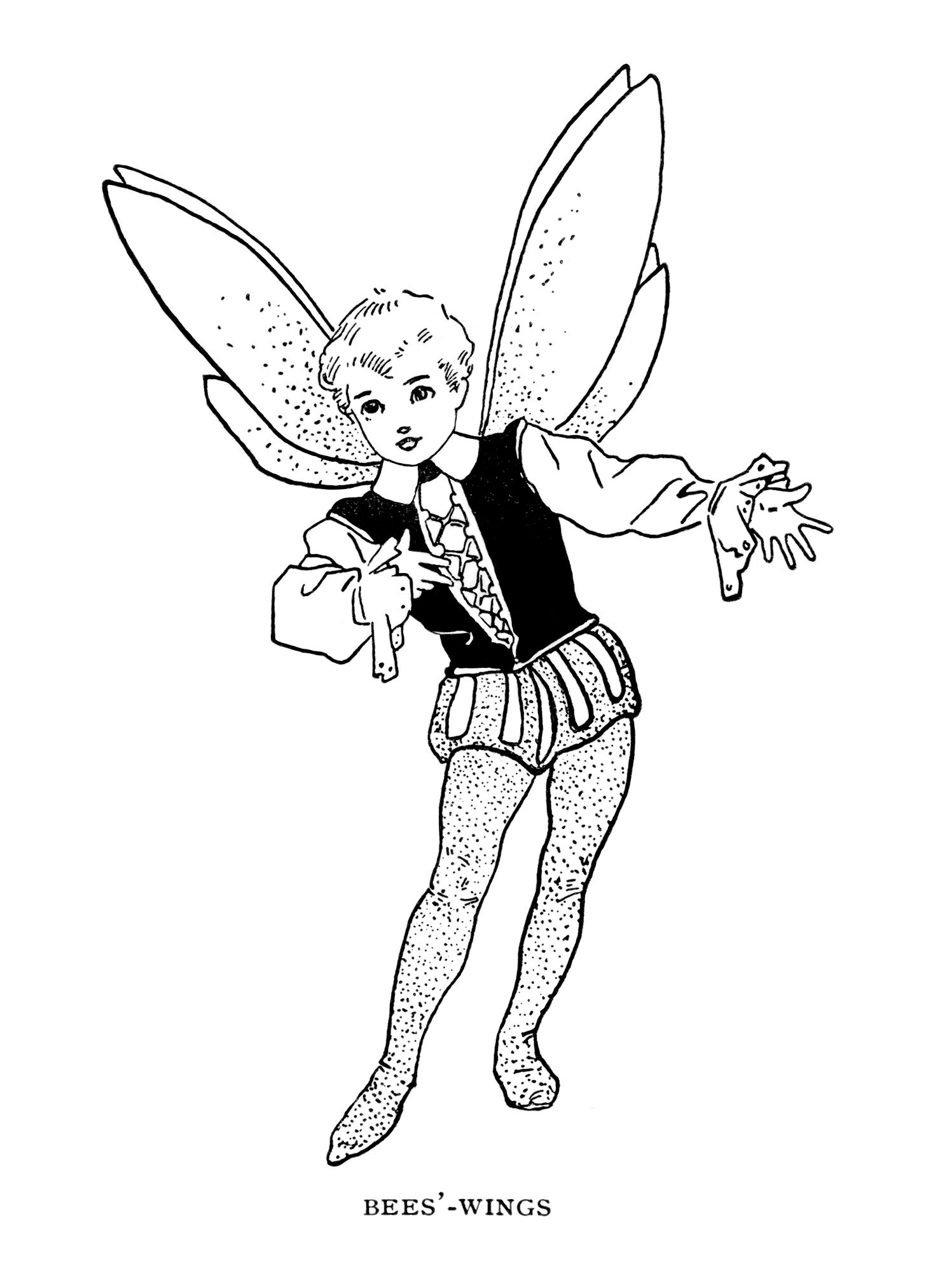Free Vintage Image Bees 39 Wings Fairy Old Design Shop Blog Vintage Fairies Fairy Coloring Pages Fairy Coloring