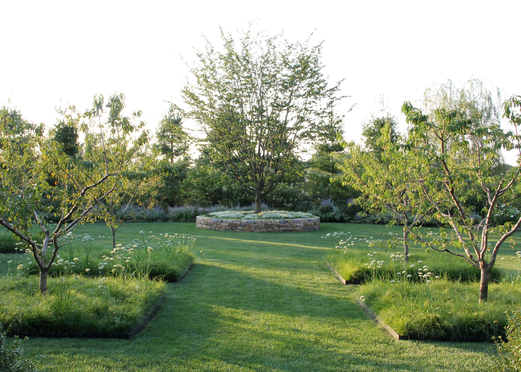 nice layout for a backyard orchard outdoors and garden