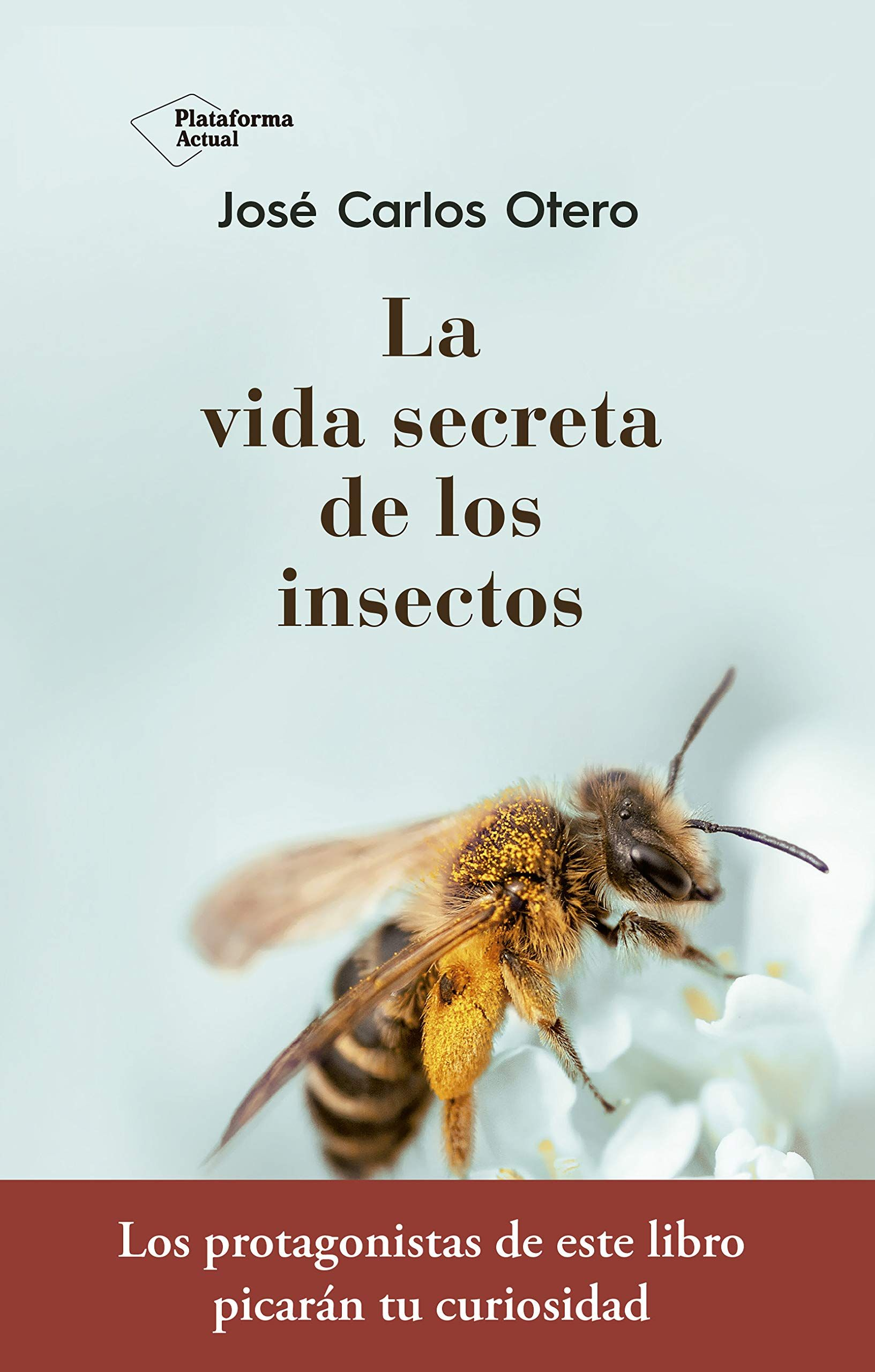 La Vida Secreta De Los Insectos Secreta Vida La Insectos