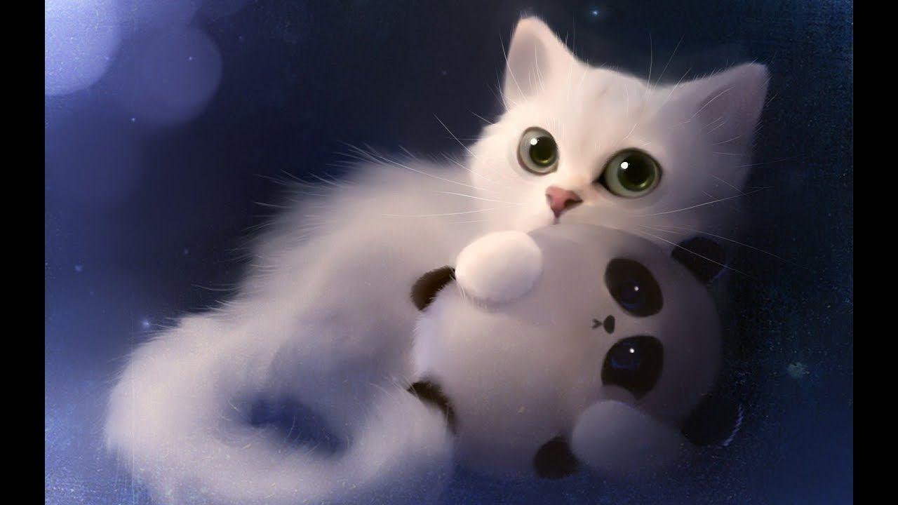 Cute Cats And Kittens Doing Funny Things Meow Moe Cute Laptop Wallpaper Hd Cute Wallpapers Cat Wallpaper