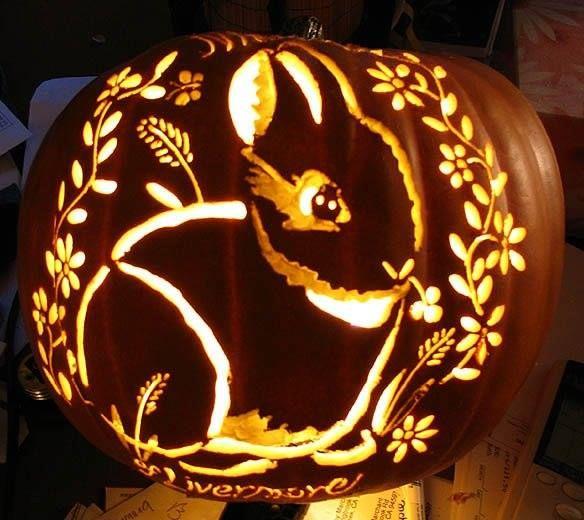 Nabbles the bunny art pumpkin carving pinterest