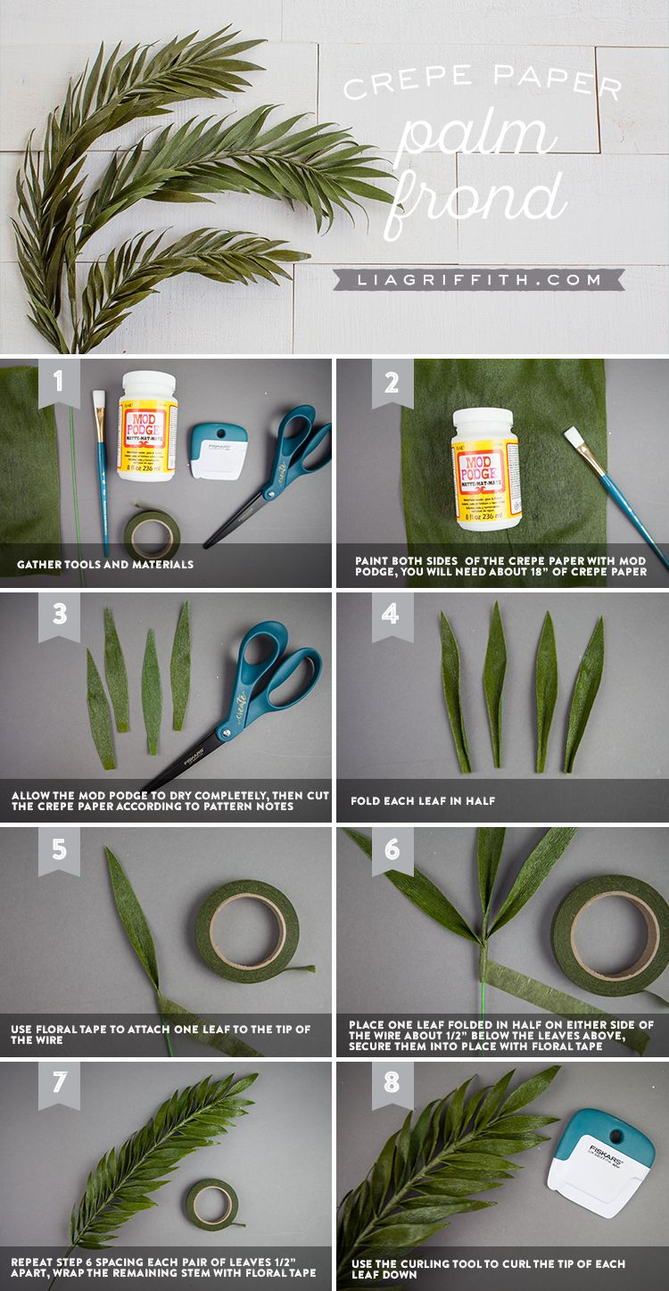Create Your Own Crazy Real Crepe Paper Palm Fronds