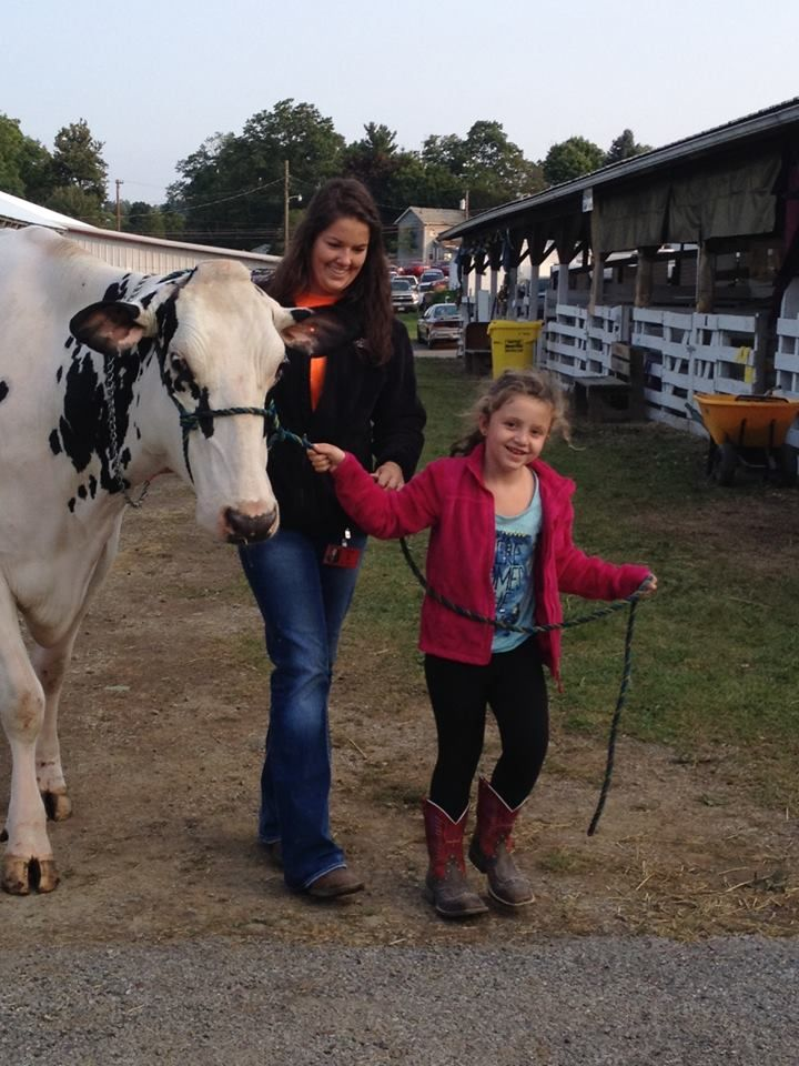 Columbiana County Fair - Getting Ready for the Dairy Cow Cheese Auction 2014 | Minerva Dairy