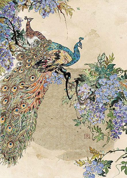 Peacock Wisteria by Jane Crowther. Design for Bug Art greeting cards.