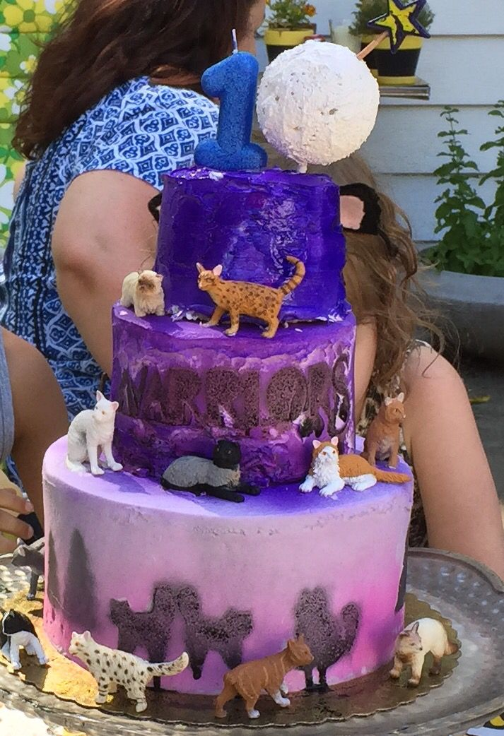 Warriors Cats Cake My Daughter And I Made For Her 10th Bday Not