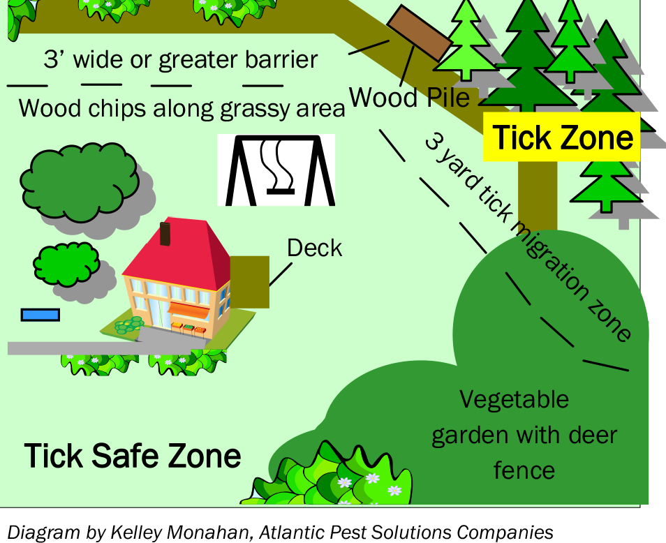 Lyme Disease And Tick Management North Branch Landscape Company Ticks Pest Solutions Get Rid Of Ticks