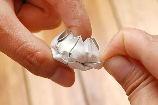 How to Make a Simple Origami Lotus Flower: 12 steps - wikiHow