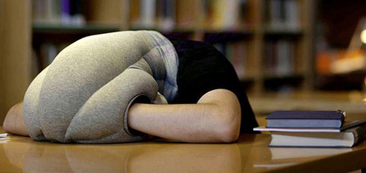 Ostrich Pillow Straussenkissen Das Etwas Andere Kissen Coole