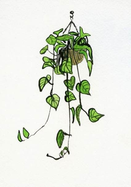 Plants Sketch Hanging 18 Ideas -   12 plants Drawing tumblr ideas