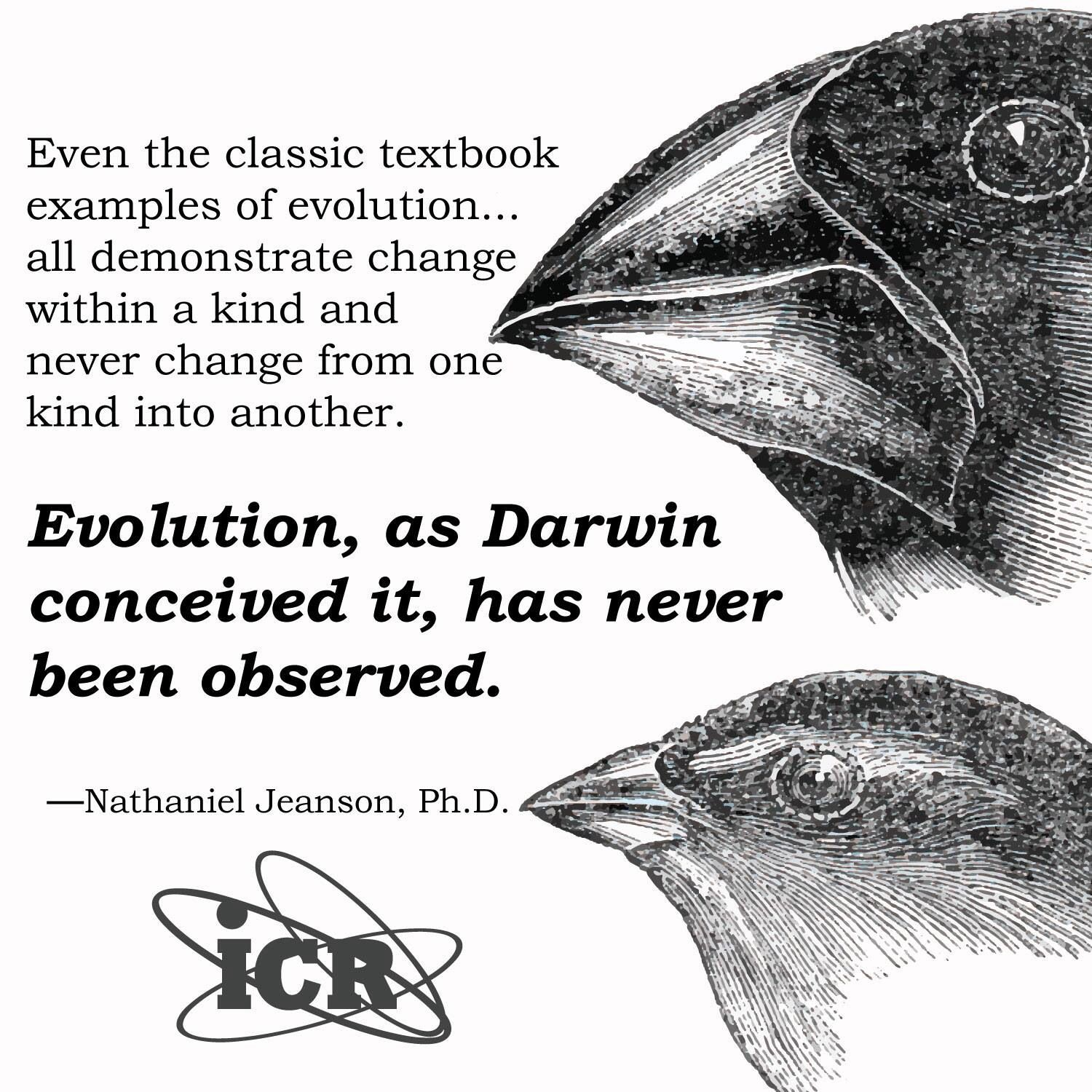 I want to write an essay on evolution vs creationism? but i never read the bible?