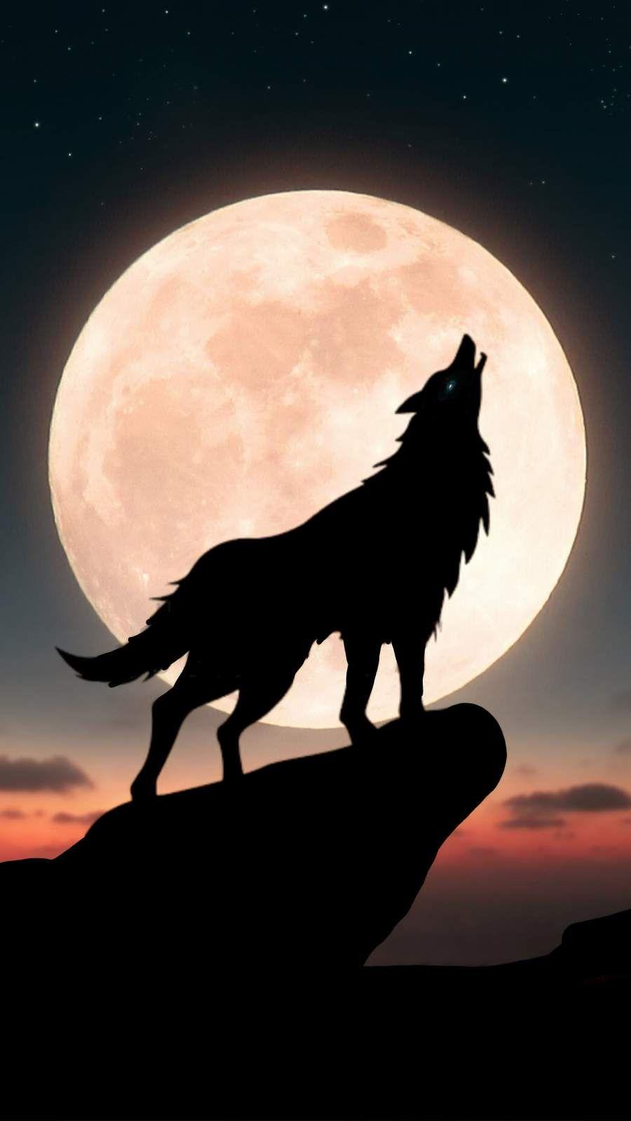 Moon Wolf iPhone Wallpaper   Wolf wallpaper, Animal wallpaper ...