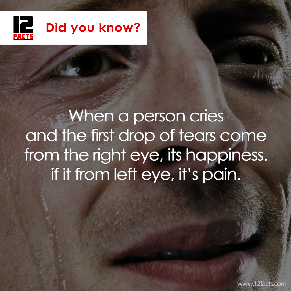 100 Cool and Fun Random Fact You Probably Haven't Heard About