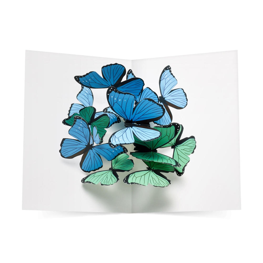 Beautiful Butterflies Pop Up Note Cards Set Of 6 Note Cards Notecard Set Pop Up Cards