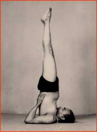 Image result for salamba sarvangasana iyengar art of yoga