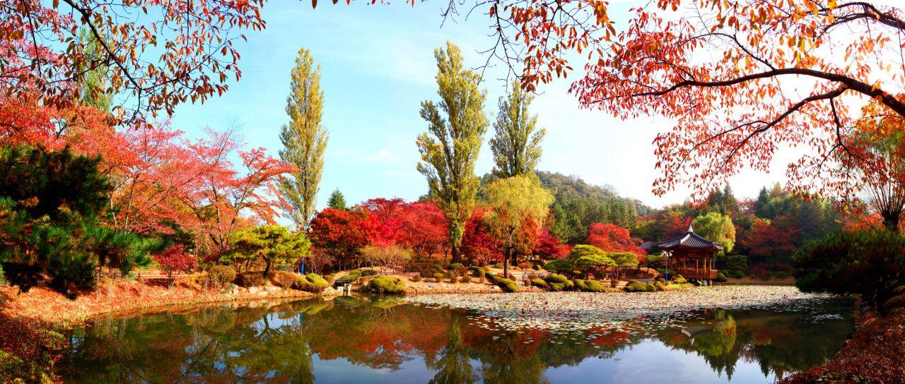 Bomun Pavilion Gyeongju South Korea Born In Seoul Korea Pinterest Gyeongju South Korea