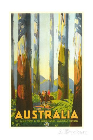 Australia Travel Poster, Trees Posters - at AllPosters.com.au