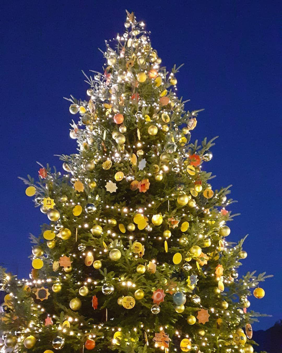 ~ 8/25 di #magiadelnatale ~  #contoallarovescia #natale #xmas #xmasiscoming #xma... #advent #adventcalendar #calendarioavvento #Christmas #christmasdecorations #christmastree #contoallarovescia