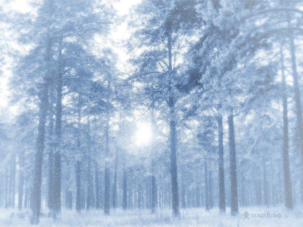 1024x768 widescreen wallpaper winter