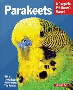 parakeet complete pet owner s manual parakeets and pet care rh pinterest com Beeks Parakeets Gender of Color Male Parakeet