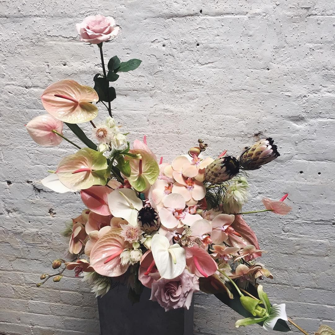 See this instagram photo by palaisflowers u likes flora