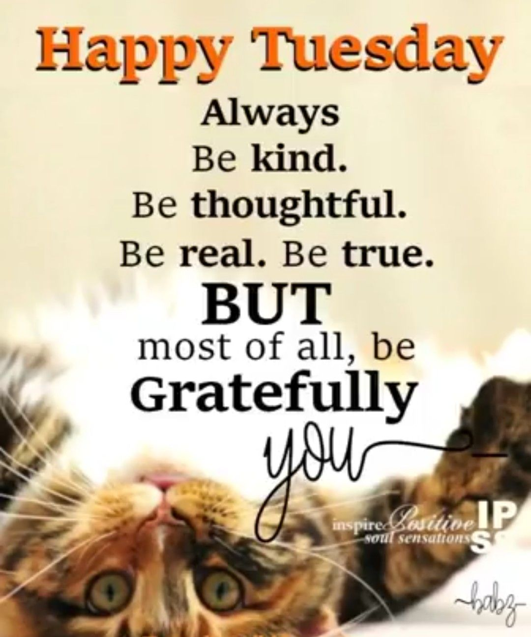 Happy Tuesday Good Morning Tuesday Quotes Good Morning Tuesday