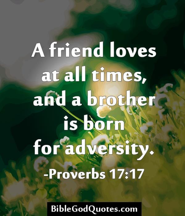 A friend loves at all times, and a brother is born for adversity ...