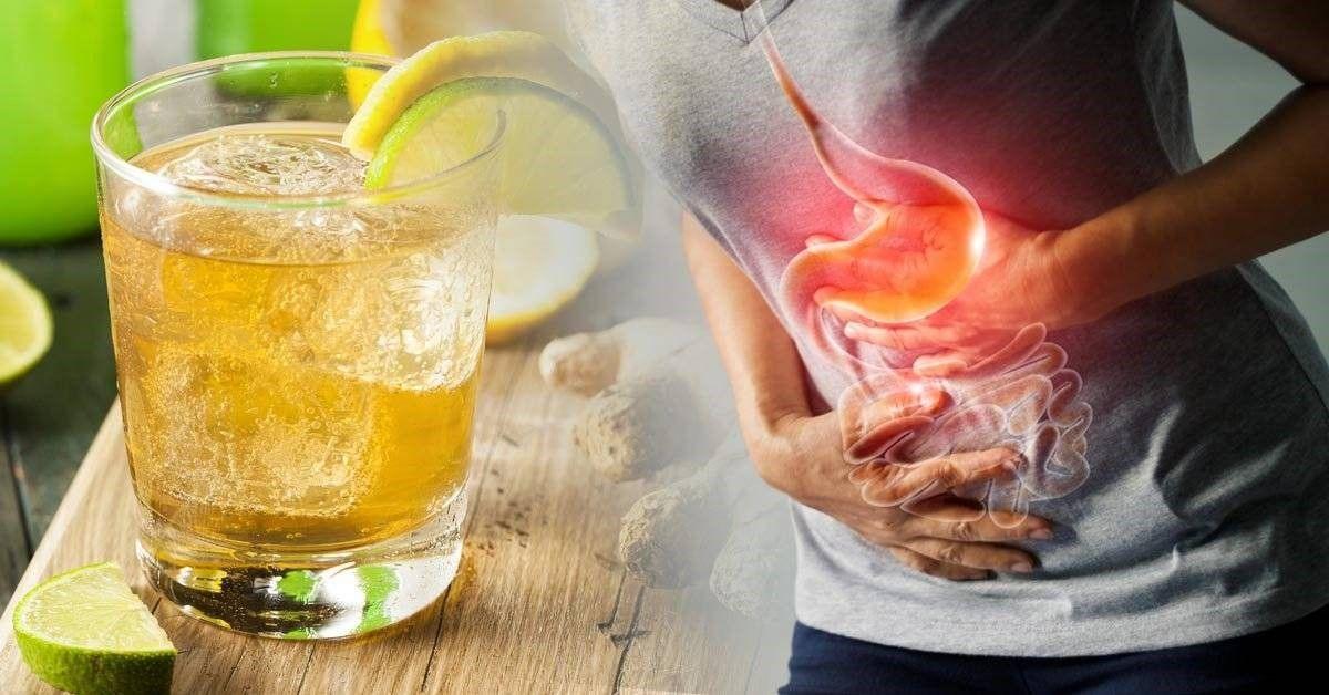 Ginger Ale Um Refrigerante Natural Medicinal Capaz De Curar