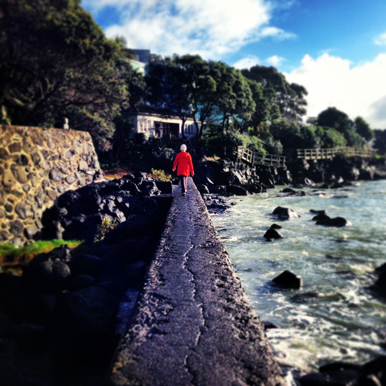 Black Rock Milford Auckland Pinterest