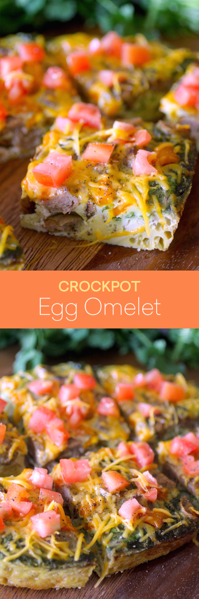 Dashing Dish Slow Cooker Sausage & Cheese Omelet