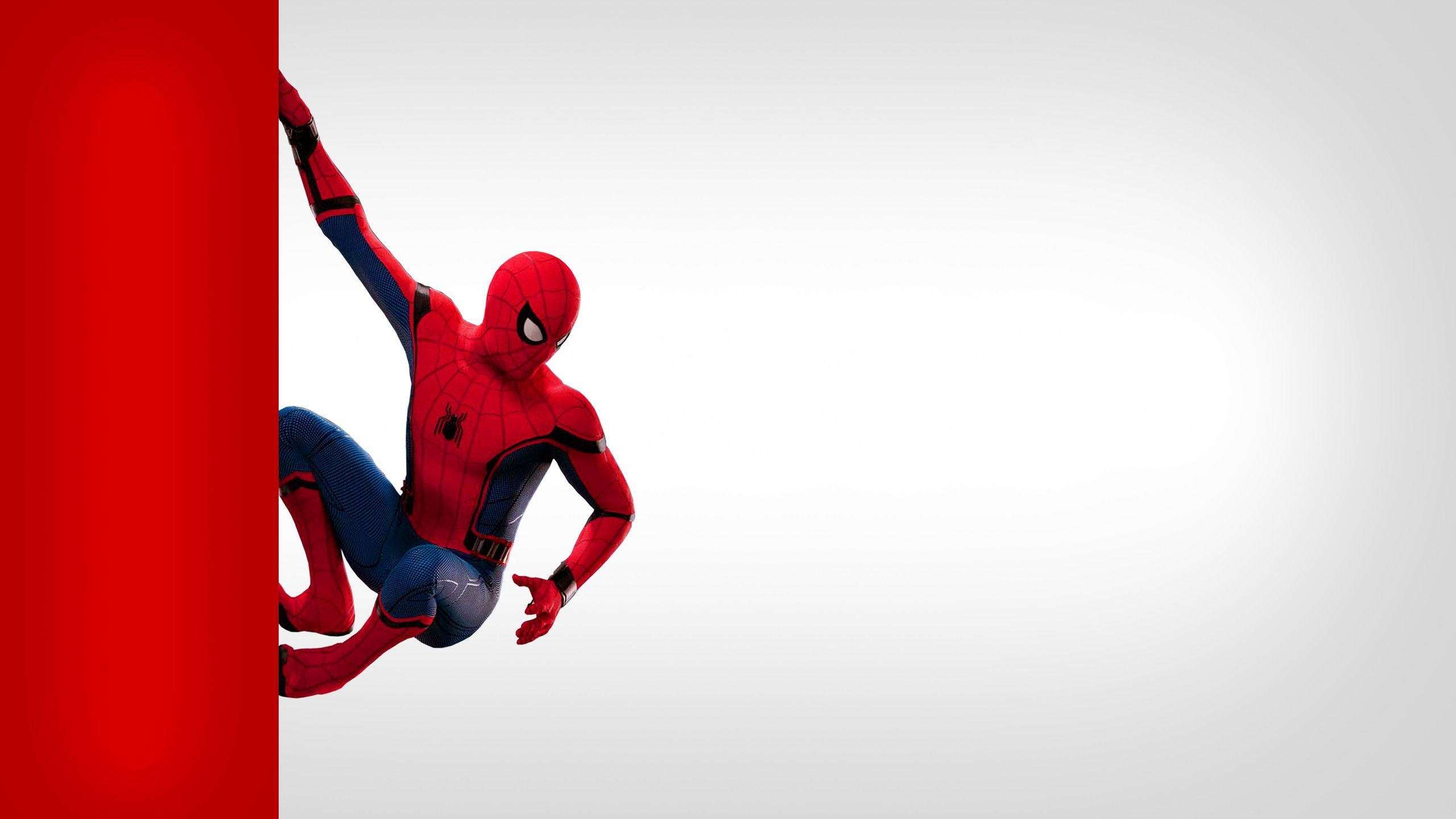 Spider Man Laptop Wallpapers Top Free Spider Man Laptop Backgrounds Wallpaperaccess Spiderman Laptop Wallpaper Wallpaper