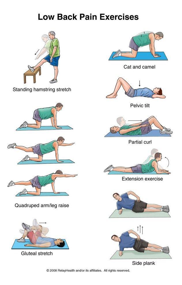 Pin on Ćwiczenia