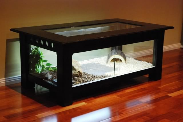 Diy Reptile Enclosure Coffee Table All The Reptile Heat