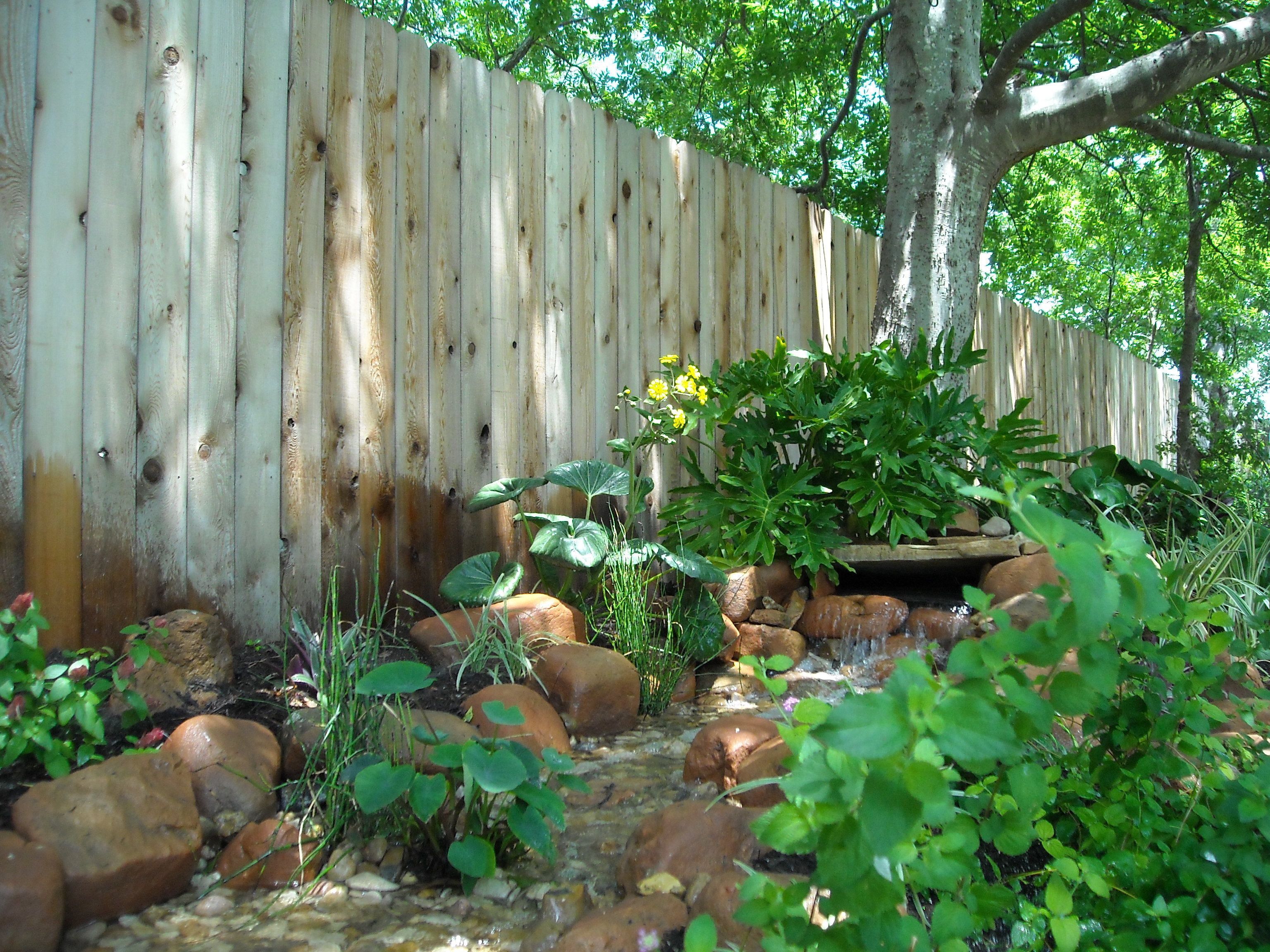 Backyard Landscape   Disappearing Stream With Beautiful Lush Plants In And  Around The Beginning Of The