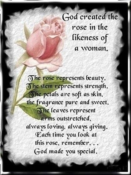 God created the rose in the likeness of woman. | |~ WOMEN OF FAITH~| | Pinterest | Encouragement ...