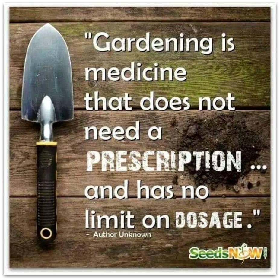 Facebook | Garden quotes & sayings | Pinterest | Facebook, Gardens ...