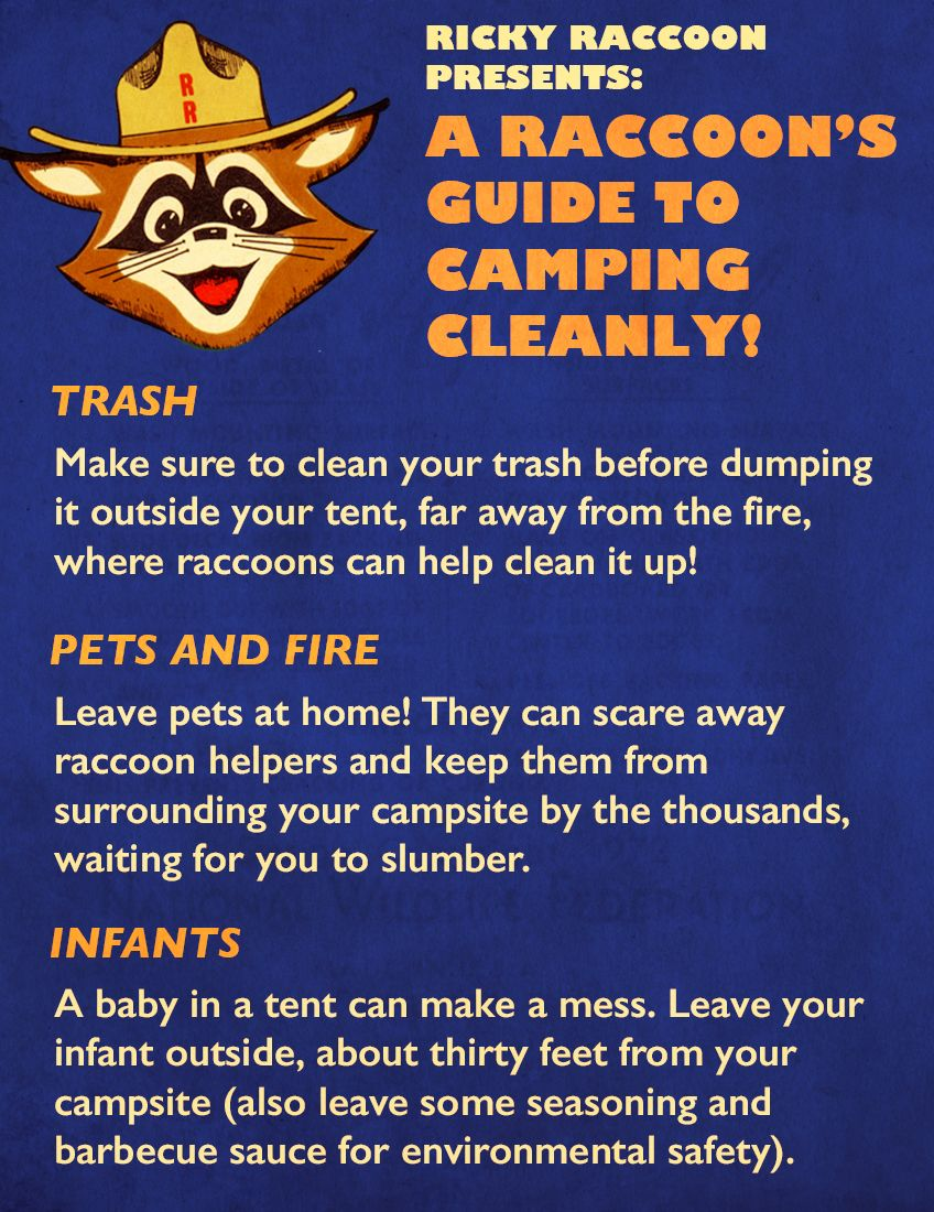 A Raccoon's Guide To Camping Cleanly