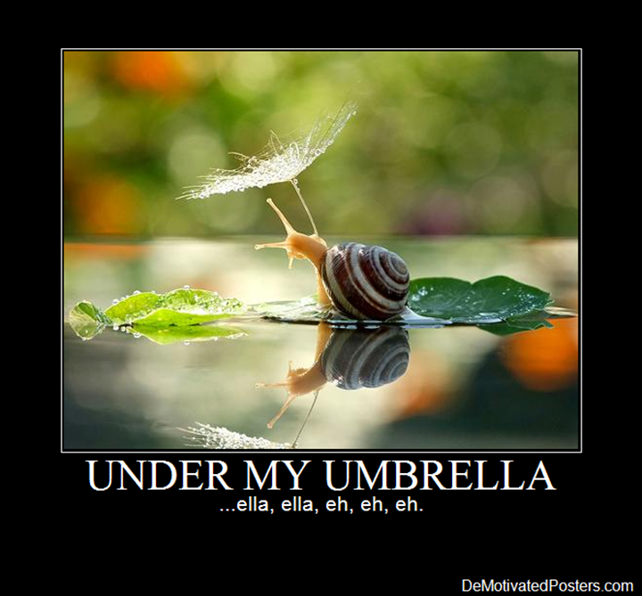 Funny Quotes About Rainy Days: For Rainy Day Humor: All Three: UNDER MY UMBRELLA -ella