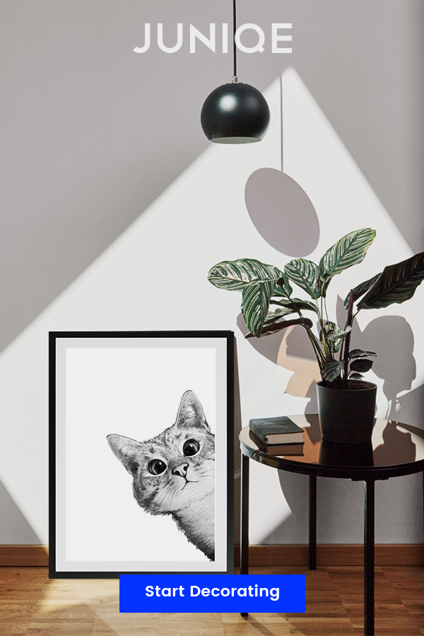 Sneaky Cat Posters & Other Cute Animals Come Out To Play