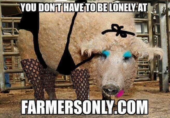 b6373be71b4f83b1a7504fe9bb883289 farmersonly com humor funnies quotes pinterest memes