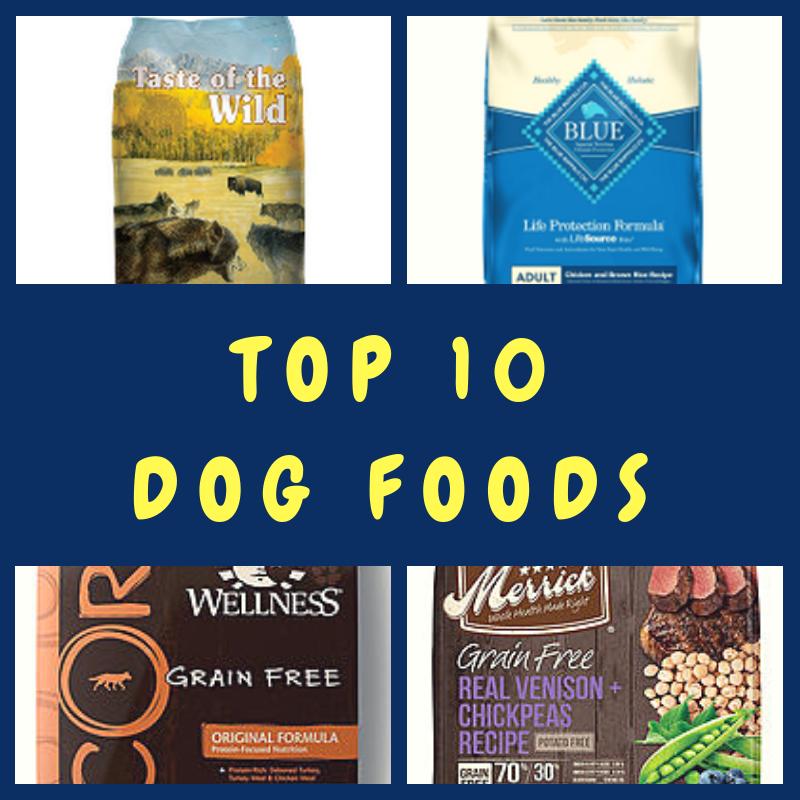 Top 10 Dog Foods Top 10 Dog Foods Dog Food Recipes Best Dog Food