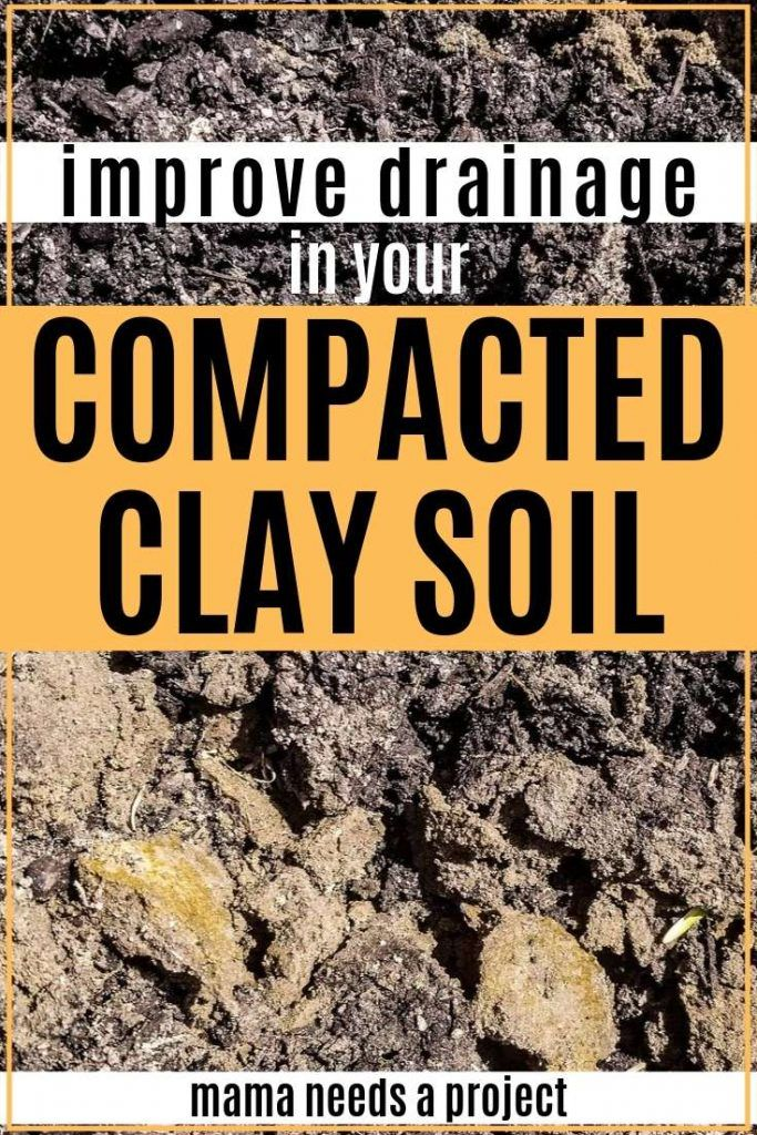 Improving Clay Soil with a Raised Flower Bed Clay soil