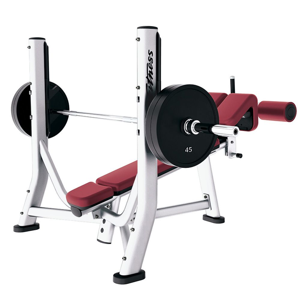 Signature Workout Machines Fit Life Gym