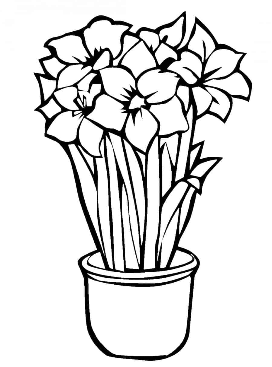 Flower Pot Coloring Pages Flower Coloring Pages Flower Drawing
