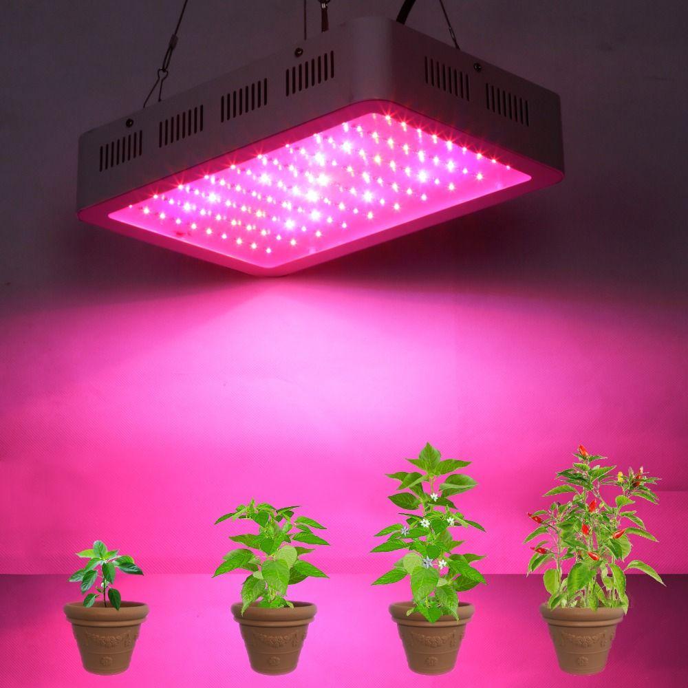 Najlepiej Pelne Spektrum 300 W Doprowadzily Rosna Swiatlo Dla Hydroponika Cieplarnianych Rosna Namiot Box Lamp Led Grow Lights Best Led Grow Lights Grow Lights