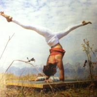 vrschikasana scorpion yoga posture  yoga girl yoga
