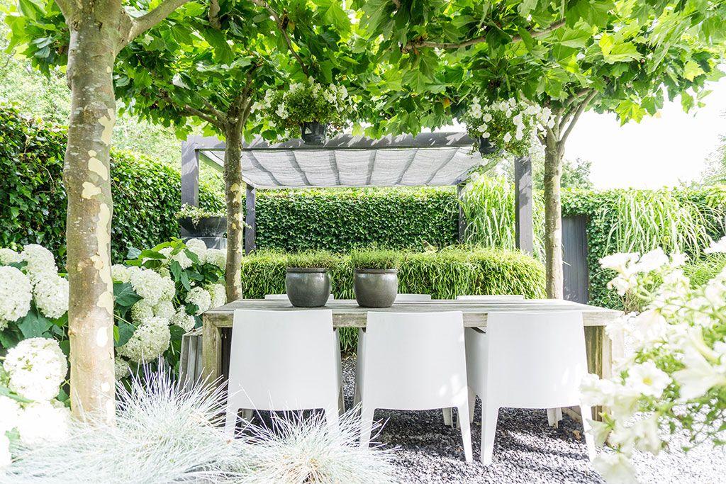 Annemieke toont haar tuin modern minimalistisch en scandinavisch